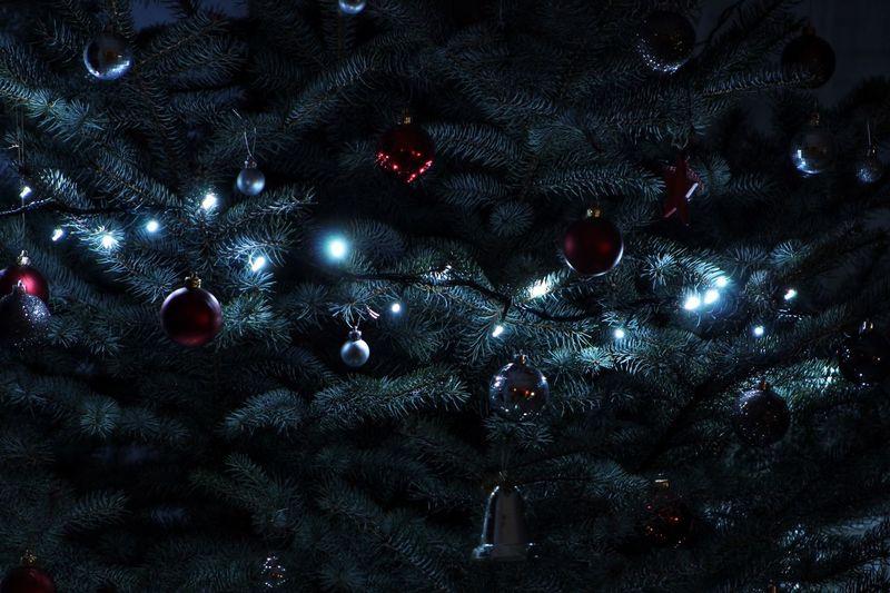 Full frame shot of illuminated christmas tree at night