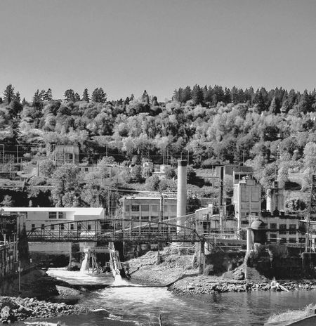 A Hydroelectric Plant in Oregon City, Oregon Black And White Photography Trees And Sky Oregon City, Oregon Pacific Northwest  The Willamette River Smokestack Hydroelectric Power Plant Tree Plant Sky Nature Built Structure Architecture Day Clear Sky Building Water