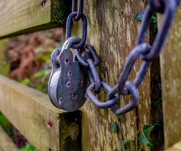 Close-up of chain hanging on metal fence