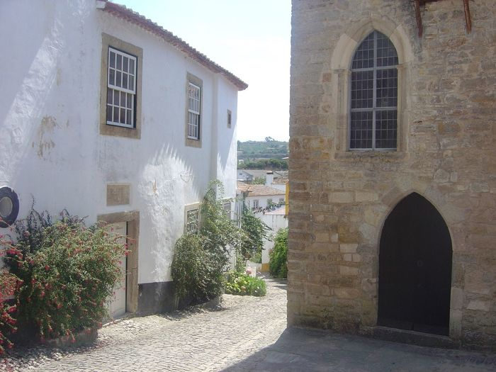 Arch Architecture Brick Wall Building Building Exterior Built Structure Day Façade History House Lisbon No People Old Outdoors Plant Residential Building Residential Structure Street Wall Wall - Building Feature Window