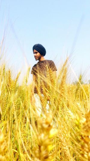 Young man standing on wheat field against clear sky