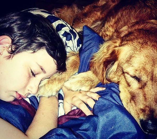Sweetness Love Aboyandhisdog Holdingpaws Dog Myson Goldenretriever Goldensofinstagram Goldenboy