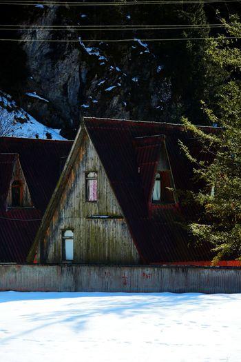 Trabzon Turkey  Trabzon Uzungöl Kar Snow Kulübe Dağ Kulübesi