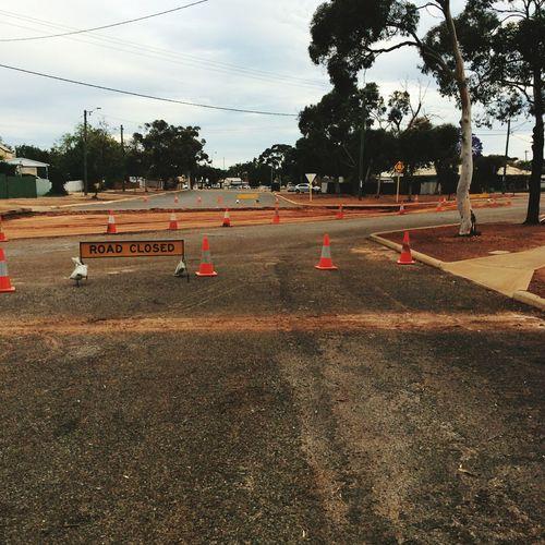 Road Closed Road Construction Tree Sky