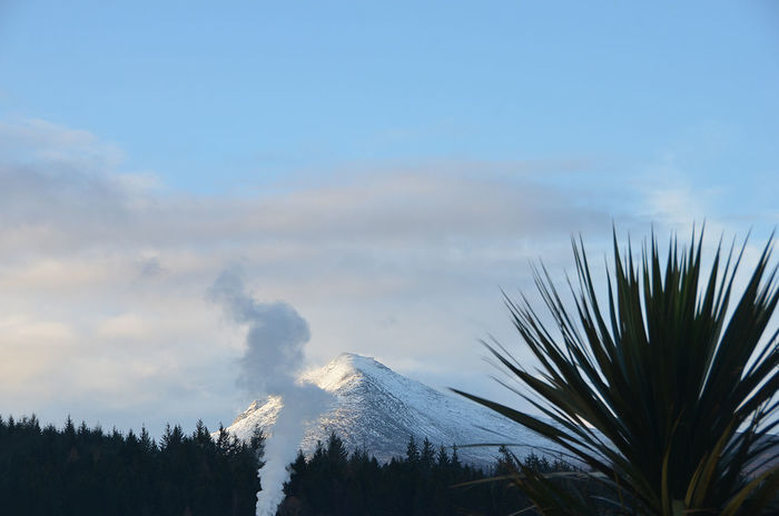 Arran  Isle Of Arran  Palm Palm Tree Steam Beauty In Nature Cloud - Sky Day Mountain Nature No People Outdoors Scenics Sky Snow Snow Covered Snowcapped Mountain Tranquility Tree