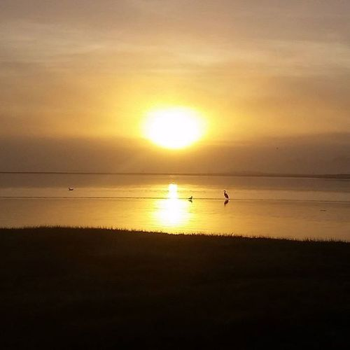 This morning's Sunrise from Hooper's Crab House on my way to the OC Flea Market... Oceancitycool OceanCity Maryland Ocmd Ocflea Fleamarket Garagesale  Shoplocaloc