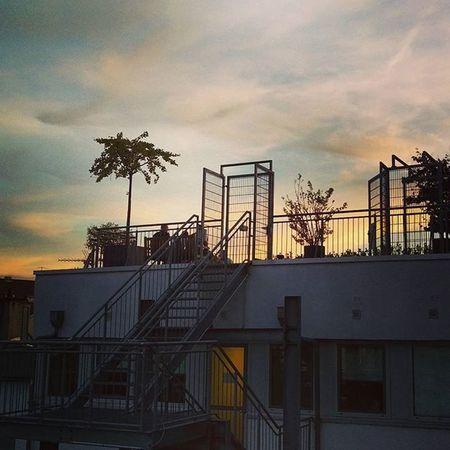 Playa marsil*. 😎🌴 Köln Kolle Cologne Weather SummerInTheCity