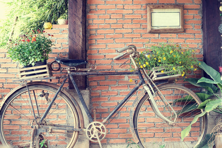 Old bicycle and flowers, vintage and retro style Vintage Old Bicycle Flower Retro Decoration Home Rustic Countryside Outdoors Garden
