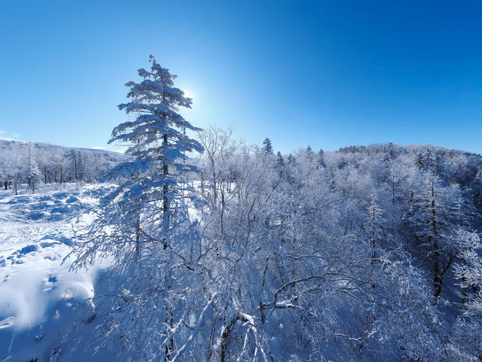 Scenic view of snow covered mountain against clear blue sky