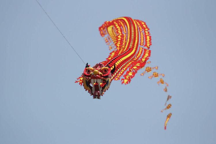 Dragon like kite