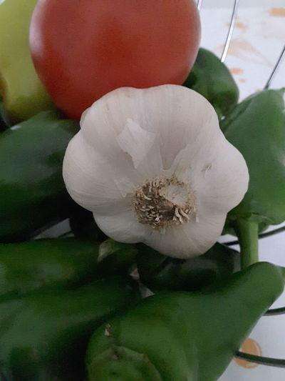 Food Vegetables