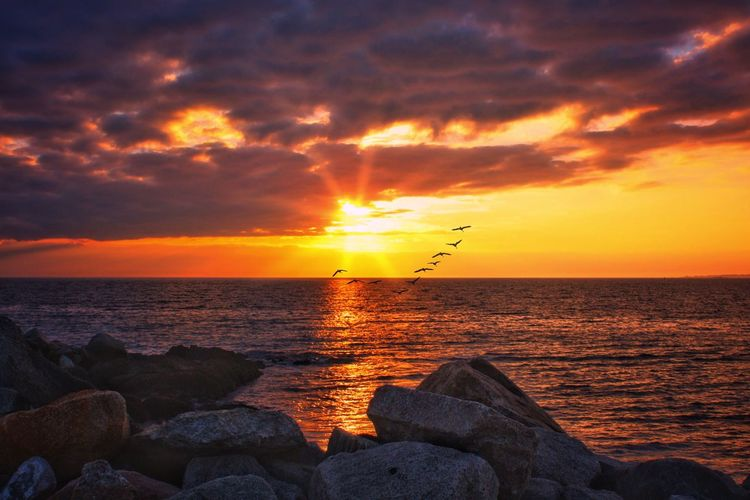 Sunset Sky Water Sea Beauty In Nature Scenics - Nature Cloud - Sky Idyllic Nature Solid Rock - Object Bird Animal Themes Rock Orange Color No People Tranquility Horizon Over Water Horizon Tranquil Scene