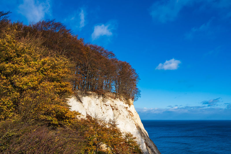 Baltic Sea coast on the island Moen in Denmark. Beauty In Nature Water Scenics - Nature Plant Sea Nature Day No People Landscape Chalk Cliffs White Cliffs  Coast Shore Baltic Sea Denmark Moen Møns Klint Moensklint Tourism Vacation Travel Destinations Travel Relaxing Tranquil Scene Autumn
