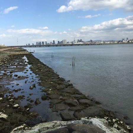 Riverside River 淀川