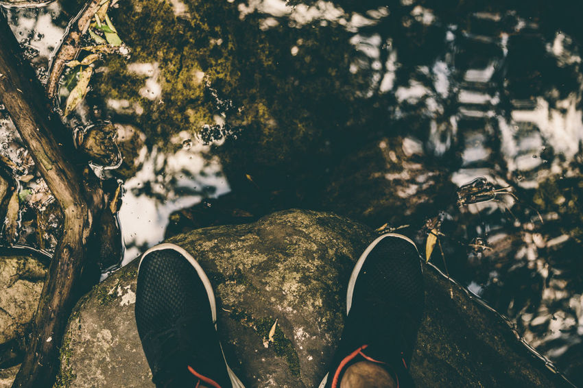 Every step counts South Africa Nature Reflection Capetown Shoes Sneakers Garden Kirstenbosch Colors Dark Sunset Night Showcase: January