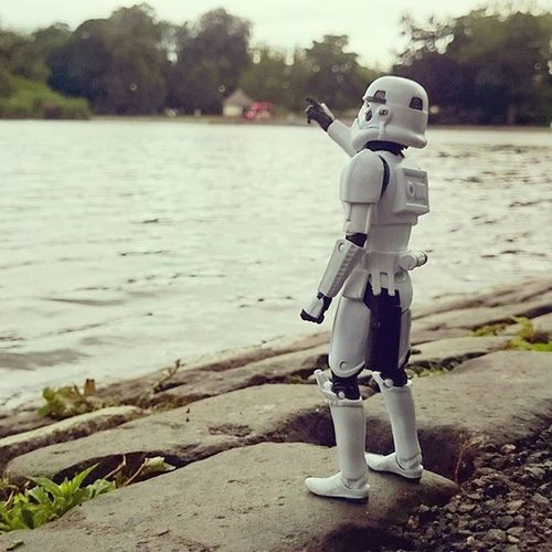 Norman had never been to the park before, he spotted a seagull and panicked! Thought it was an x-wing! Toyphotography Toysalive Toys Normanthetrooper Stormtrooper Afosw Toyunion Toycrewbuddies Toyslagram Leazespark Newcastlecitycentre @starwars_3lite Starwars_elite Toyoutsiders @toyoutsiders