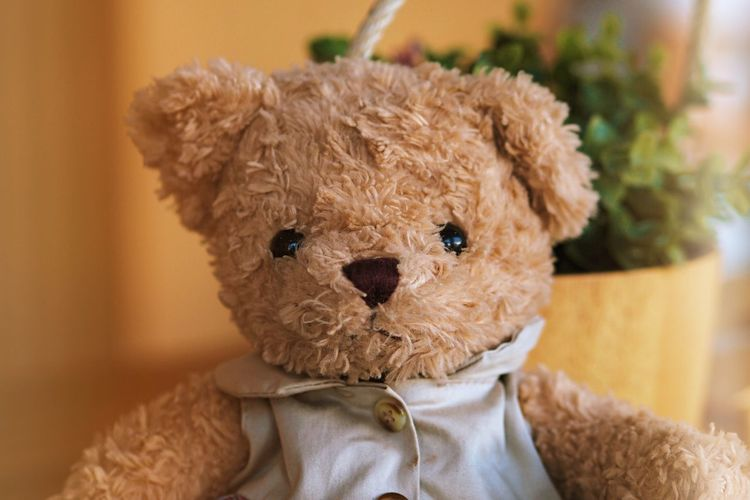 Close-up of stuffed toy at home