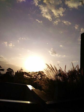 £very $un$et bringś α promise of nęw dαwń..!! Sunset Sky Nature
