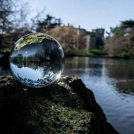 Reflection Sphere Crystal Ball Tree Water No People Outdoors Architecture Close-up Refraction Day