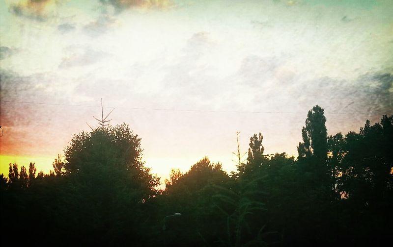 Taking Photos sun dusk Hanging Out