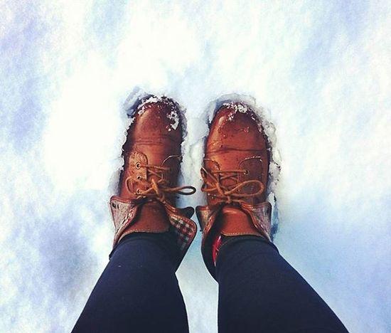 Snowy feet! Snow Feet Shoes Boots Walk Legs Snowday Ice Freeze Frost Drummanorforestpark ForestPark Park Cookstown Tyrone Northernireland PureNorthernIreland Discovernorthernireland Insta_ni Ireland Wanderireland Tagfeet Snowing Winter FootPrint shoeporn