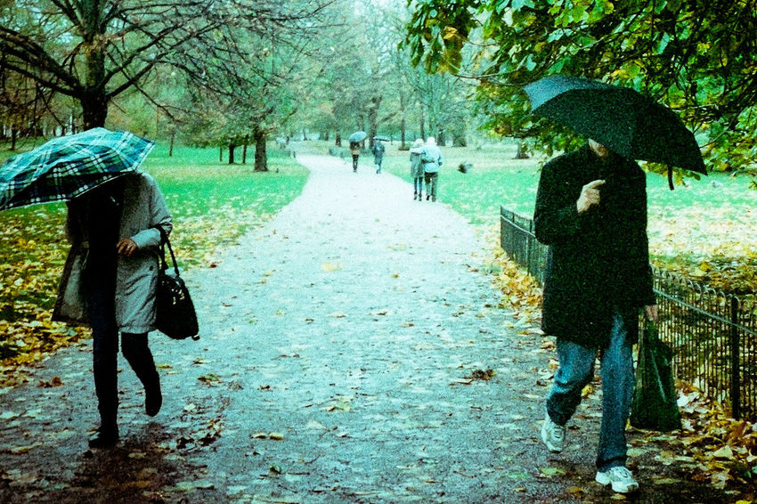 St. James Park, London, UK. 2015© Chit Min Maung http://www.cmmaung.me/Postcode Postcards Outdoors Walking Nature Streetphotography Streetphoto_color Film Photography Cmmaung Cmmaungme London