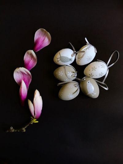 Close-up of easter eggs with flowers over black background