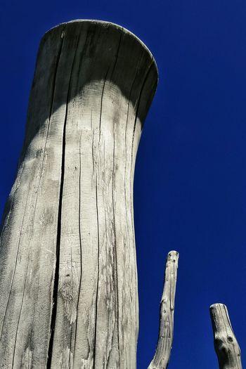 EyeEm Gallery EyeEm Best Edits EyeEm Best Shots Abstract ArtWork Art And Craft Artistic Expression Artistic Logs Wood - Material Wood Art Abstract Art Below View From Below Art Arts And Crafts Abstractart Absence Pole Poles Wood Wood Pole Wood Post Wood Posts