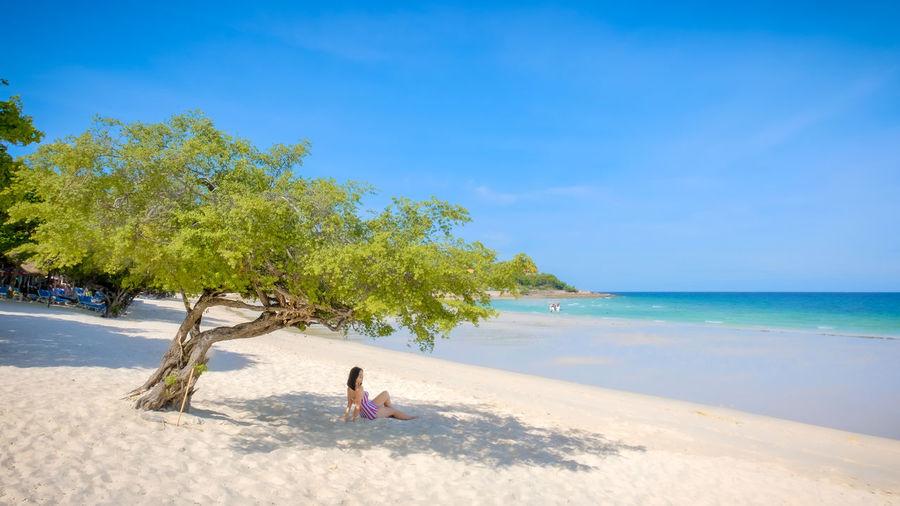 Woman sitting below tree at beach