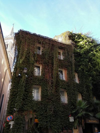 Keepitgreenkeepitclean Fromromewithlove Oldhabits Buildingnextdoor