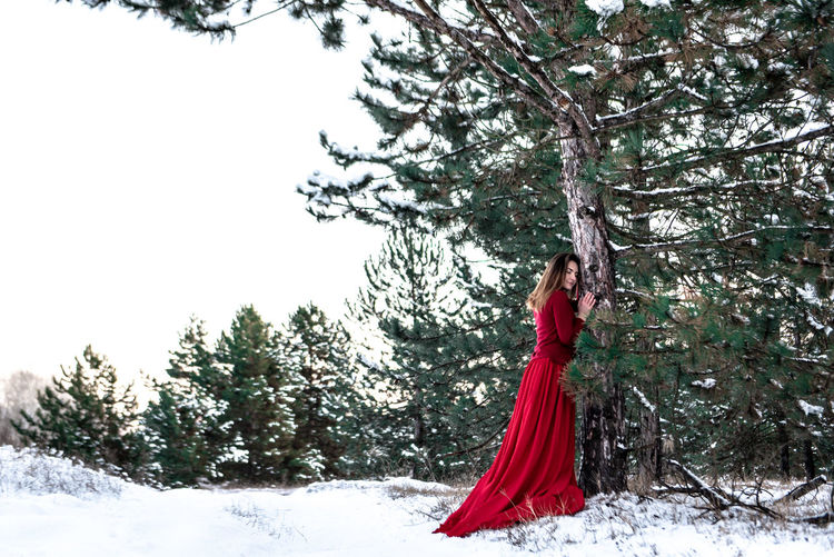 Morning Light Green White Background Pinetrees Tree Forest Copy Space Natural Snowy Cold Temperature Winter Snow Girl Woman In Red Red Dress Red Outdoors Nature Women Young Adult One Person Beauty In Nature Day Beauty Young Women