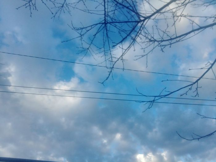 Cable Sky No People Cloud - Sky Electricity Pylon Blue Low Angle View Day Outdoors Close-up Nature No Person Huaweiphotography Eyeem Market WOLFZUACHiV Photos Wolfzuachiv Veronica Ionita Ionita Veronica Huawei Photography On Market WOLFZUACHiV Photography Sky And Clouds Nature Tree Blue Sky Blue Clouds