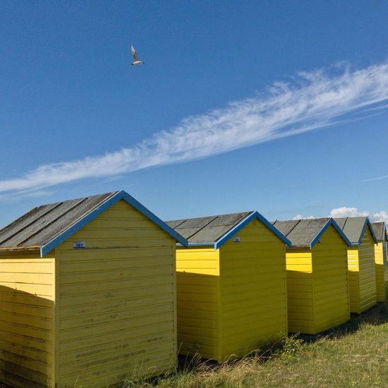 EyeEm Selects Sky Day Built Structure Beachhut Beachhuts Outdoors Beach Architecture Nature Blue Bird Gull Yellow