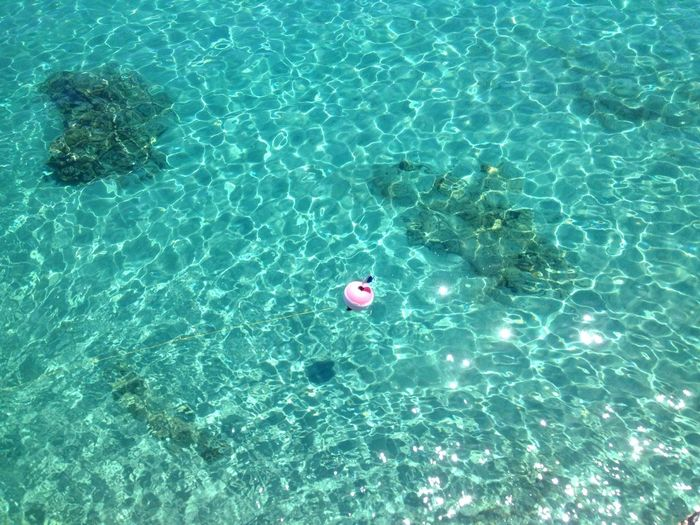 High angle view of pink buoy in blue sea on sunny day
