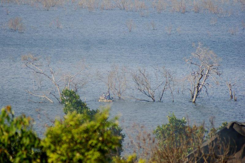 Fisherman Fisherman Fisherman Boat Mancing Mancingmania Water Tree Lake Marsh Bird Grass Plant