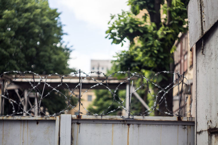 Architecture Belarus Built Structure Close-up Day Deterioration Factory Minsk No People Outdoors Selective Focus Tree
