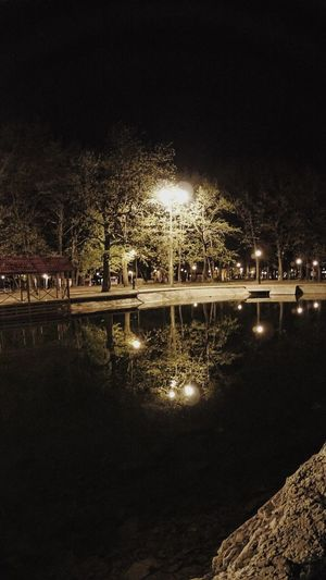 Night Tree Water No People Nature Outdoors Reflection Illuminated Sky Light Heat Night Evening Beautiful Quiet Quietly Finding New Frontiers Adapted To The City #urbanana: The Urban Playground HUAWEI Photo Award: After Dark