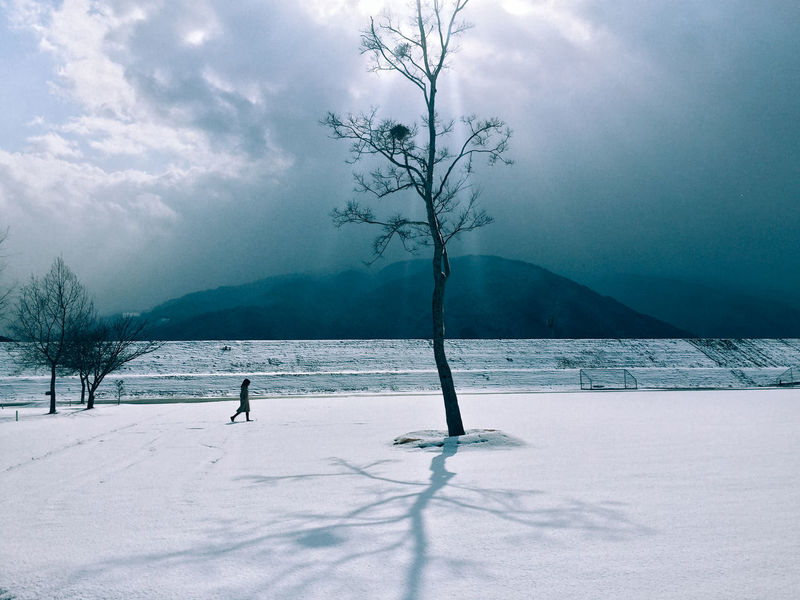 // ❄️ // AMPt_community Bare Tree Beauty In Nature Branch Canon Cloud - Sky Cold Cold Temperature EyeEm EyeEm Best Shots EyeEm Nature Lover Nature Outdoors Shootermag Shootermag_japan Silhouette Sky Snow Snow ❄ Tree Ultimate Japan Walking Around Weather White Winter