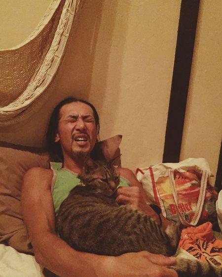 熱唱 Mylove Sing! Relaxing Cat Lovers