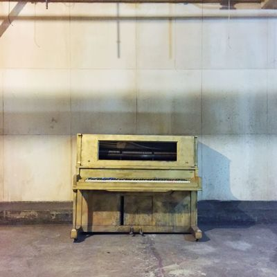 Learn & Shoot: Simplicity Setlife Yellow Piano