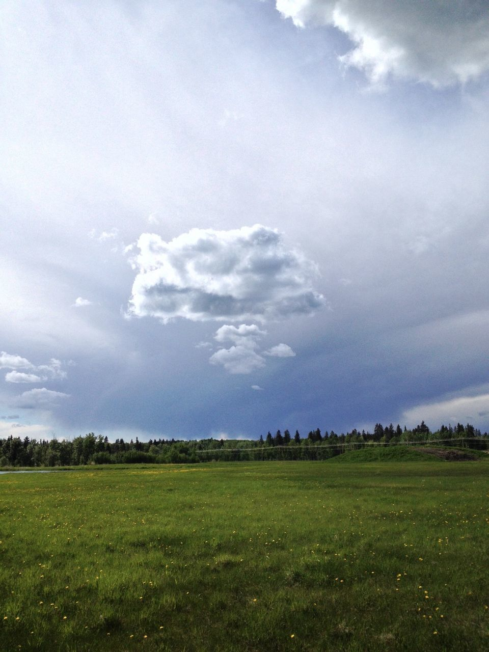 Grassy Landscape Against Cloudy Sky