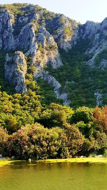 Tree Nature Outdoors No People Mountain Landscape Forest Beauty In Nature Lake Scenics Day Pinaceae Water Mountain Range Sky Freshness Olimpos, Kemer Olimposbeach