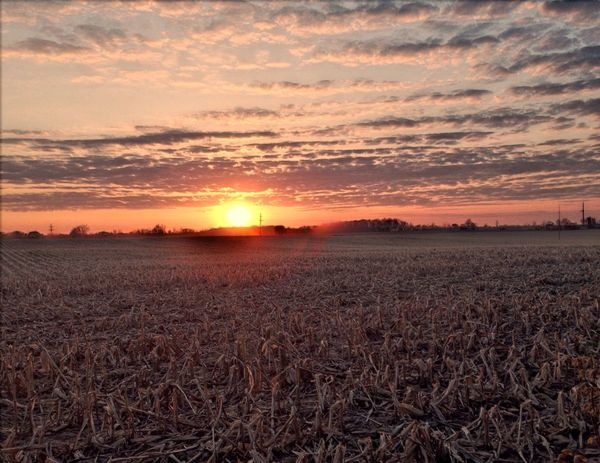 Michigan Sunset Outdoors Backyard HDR