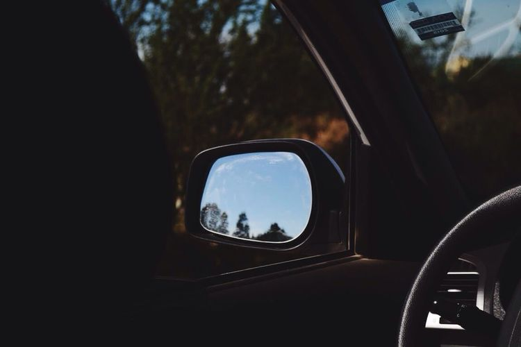 Transportation Vehicle Interior Side-view Mirror Land Vehicle Window Nature Day No People