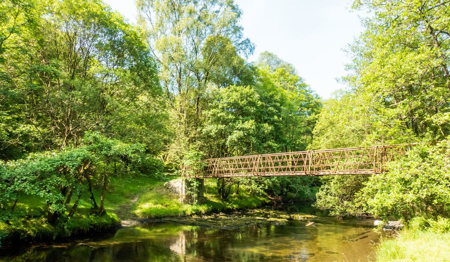 Bridge over river by trees against sky