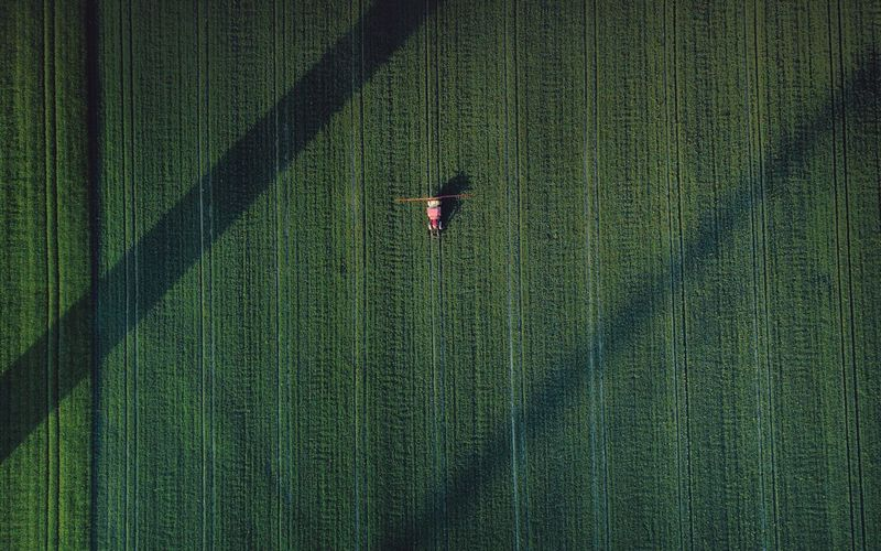 – IT WAS A WONDERFUL DAY IN GLYPHOSATE VALLEY – Check This Out DJIxEyeEm Dronephotography Drone  From Above  Agricultural Field Agriculture Green Color Aerial View Growth Full Frame Landscape High Angle View Agriculture Land Plant Rural Scene Crop  Nature Field Backgrounds No People Occupation Environment Farm Beauty In Nature Scenics - Nature #FREIHEITBERLIN The Great Outdoors - 2018 EyeEm Awards Autumn Mood Humanity Meets Technology