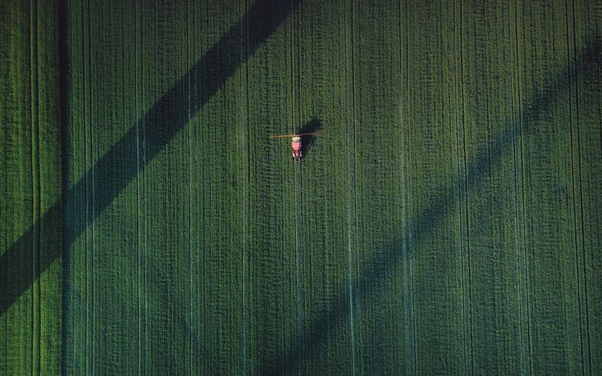 – IT WAS A WONDERFUL DAY IN GLYPHOSATE VALLEY – Check This Out DJIxEyeEm Dronephotography Drone  From Above  Agricultural Field Agriculture Green Color Aerial View Growth Full Frame Landscape High Angle View Agriculture Land Plant Rural Scene Crop  Nature Field Backgrounds No People Occupation Environment Farm Beauty In Nature Scenics - Nature #FREIHEITBERLIN The Great Outdoors - 2018 EyeEm Awards