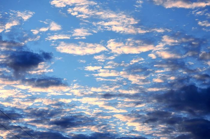 Partly cloudy Cloud - Sky Sky Full Frame Beauty In Nature Backgrounds Low Angle View Nature Textured  Pattern Cloudscape No People Blue Tranquility Day Outdoors Tranquil Scene Scenics - Nature Idyllic Sunlight