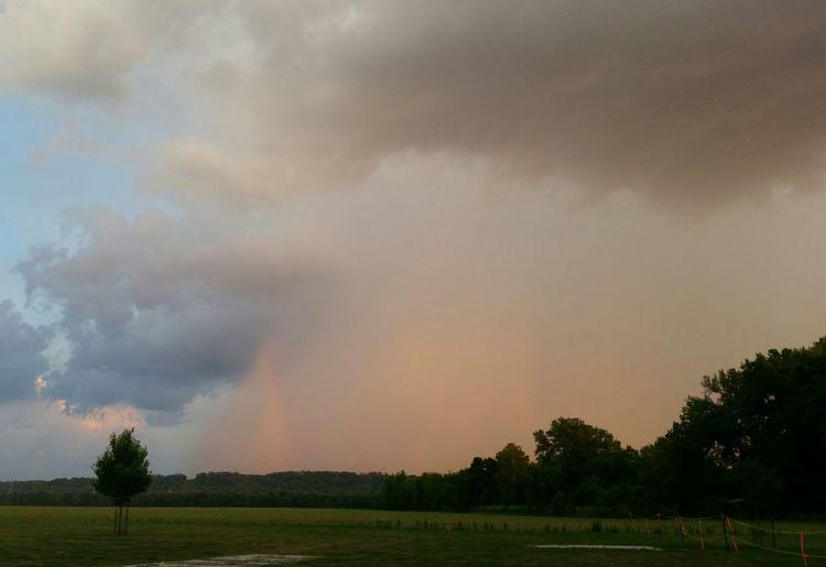 Ohio, USA Rain