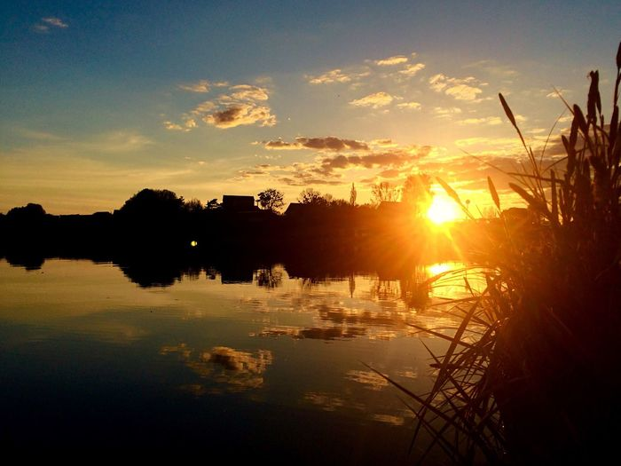 Рівне / Rivne Nature Lake Олександрія